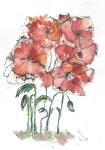 Poppys 2