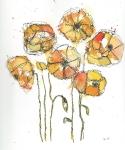 Yellow Poppys